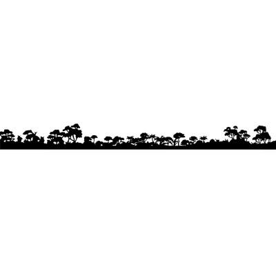 Forest line - Amazzonia